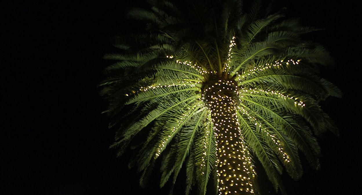 Jazyk jako rozpoznávací znamení a kouzlo Vánoc